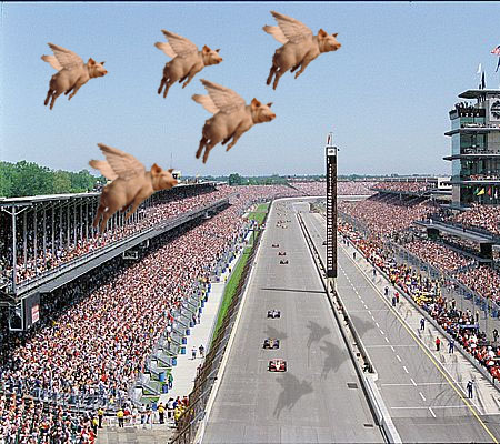 pigs-fly-over-ims